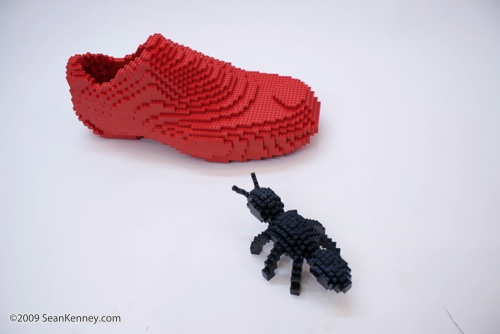 The Ant and the Shoe