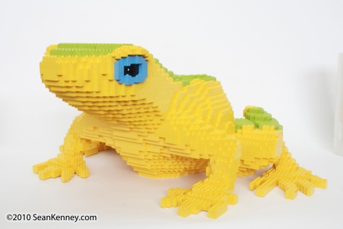LEGO sculpture Sean Kenney harlequin tree frog philadephila philly zoo creatures of habitat