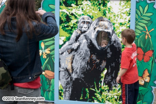 LEGO sculpture Sean Kenney western lowland gorilla mosaic mural face cutout philadephila philly zoo creatures of habitat
